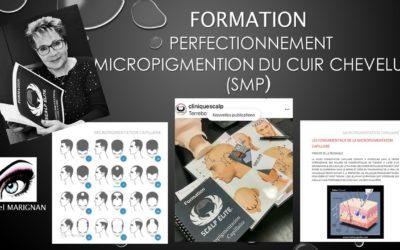 Formation online en SMP. Micropigmentation du cuir chevelu