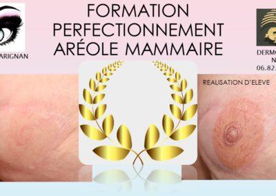 dermopigmentation,formations,aréoles 3D nimes,marseille,montpellier