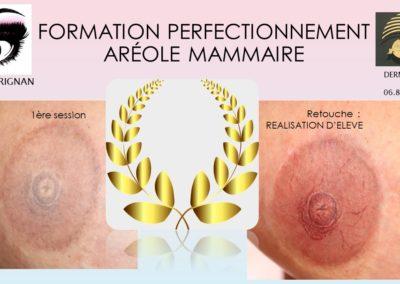 AREOLE 3D DERMOPIGMENTATION, formations nîmes, montpellier,Marseille