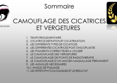 SOMMAIRE CICATRICES VERGETURES à Nîmes