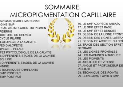 Sommaire cours micropigmentation capillaire à Nîmes